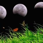 лунные